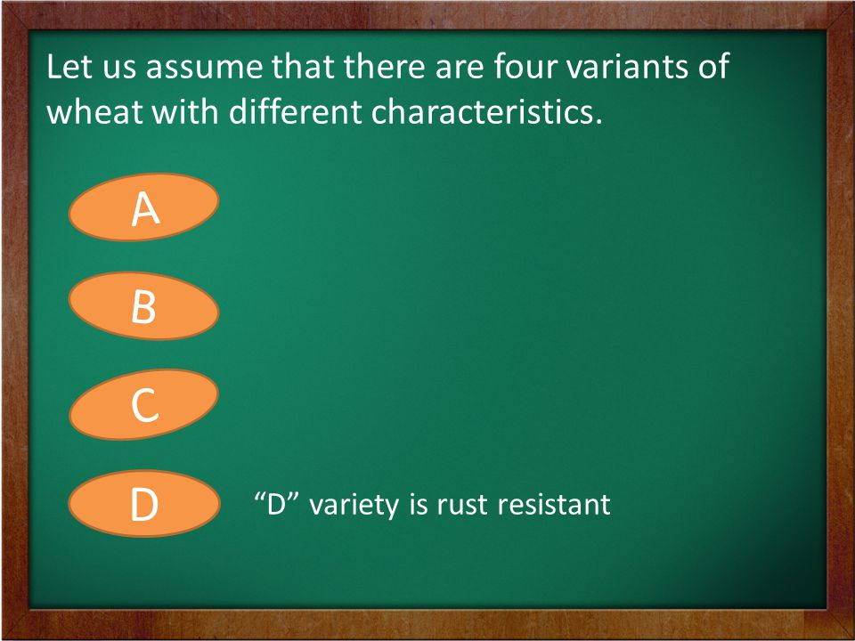 A farmer wants all these four characteristics from the four seeds in one seed. A B C D ABCD