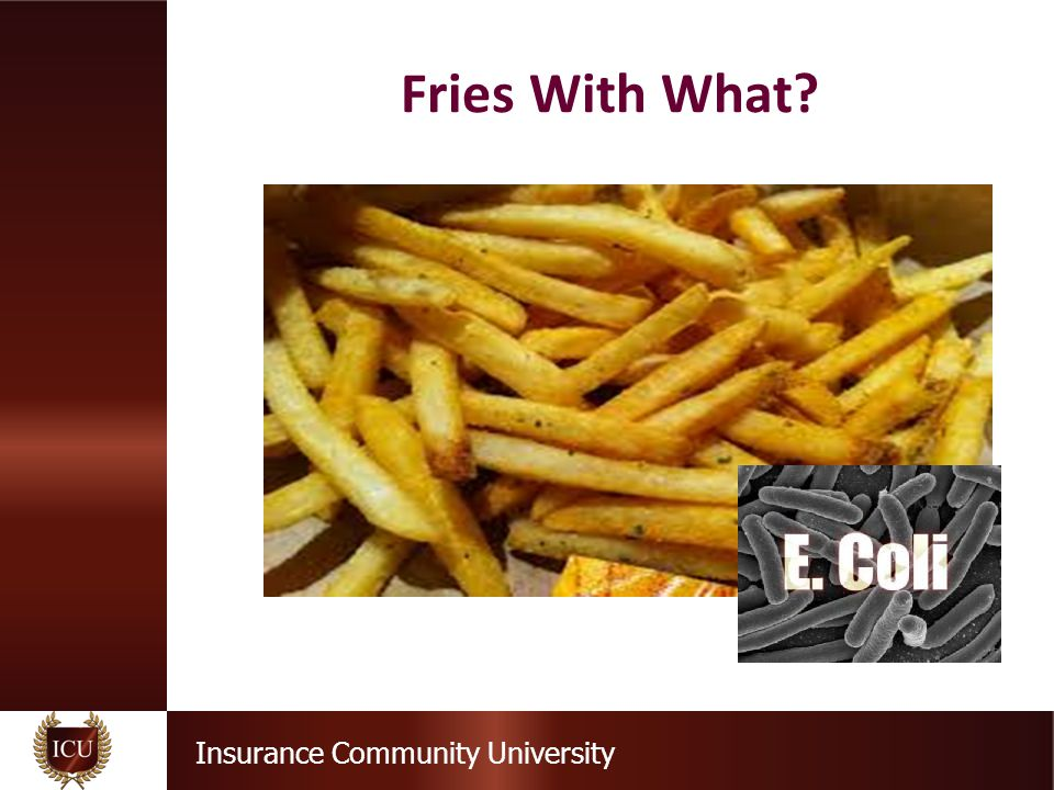 Insurance Community University Fries With What?