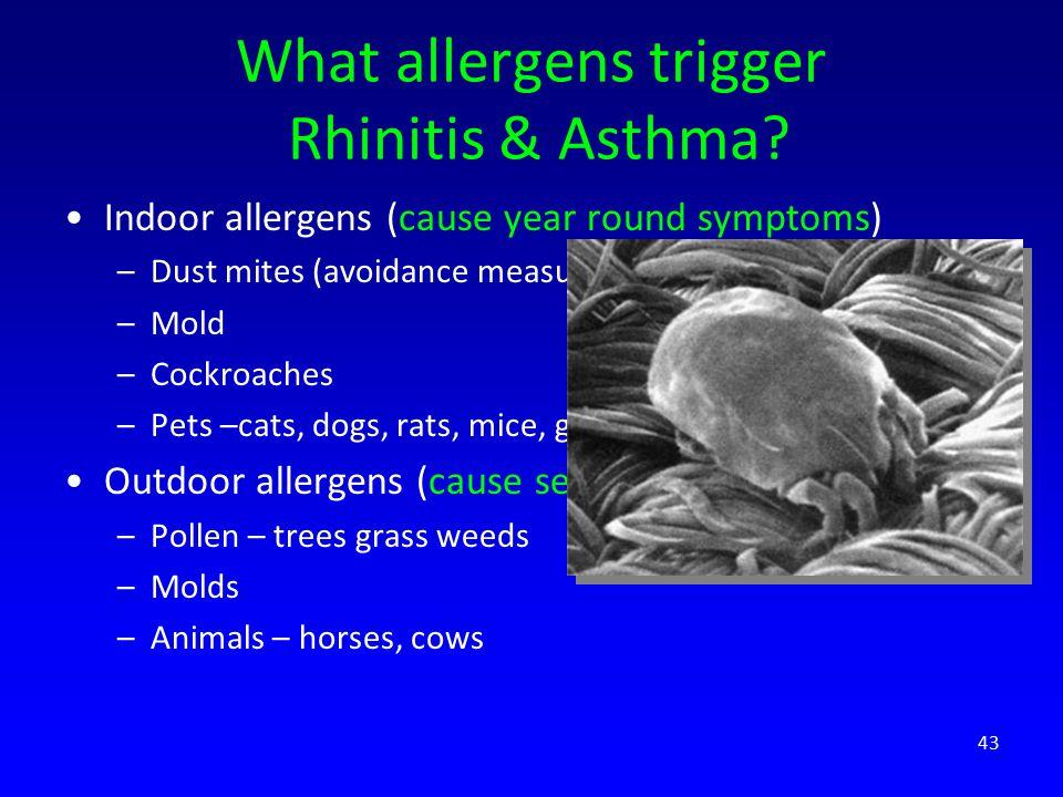 What allergens trigger Rhinitis & Asthma.