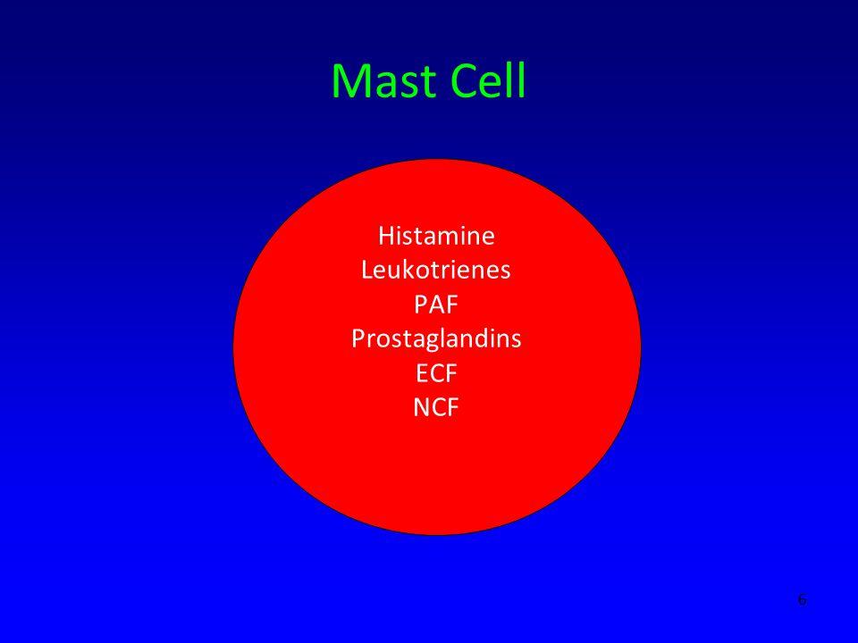 Mast Cell Histamine Leukotrienes PAF Prostaglandins ECF NCF 6