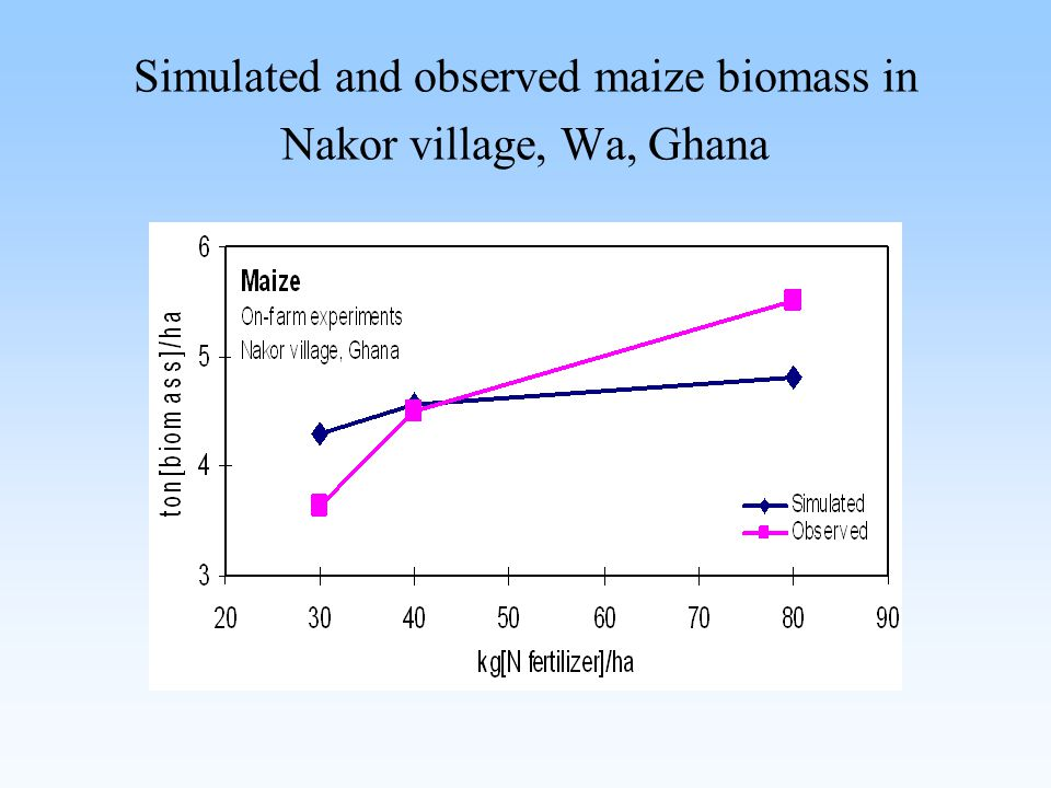 Simulated and observed maize biomass in Nakor village, Wa, Ghana