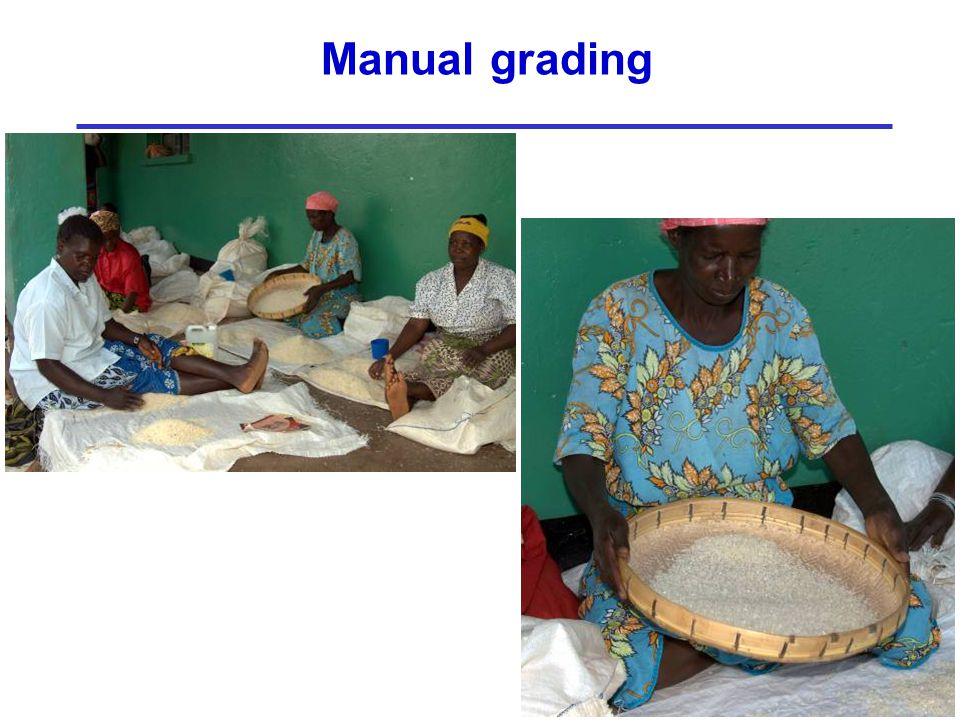 Manual grading