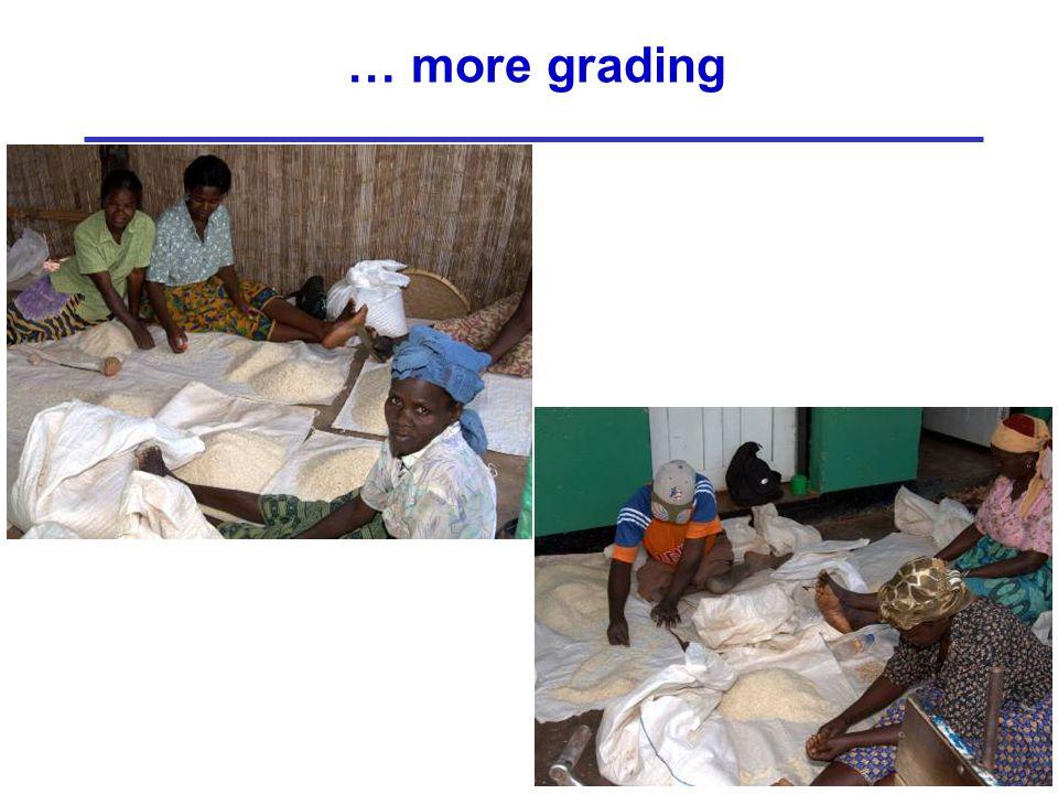 … more grading