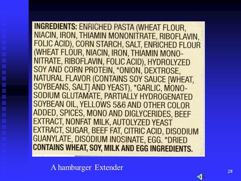 28 A hamburger Extender