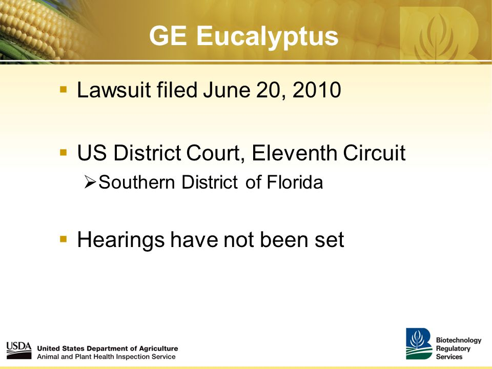 GE Eucalyptus  Lawsuit filed June 20, 2010  US District Court, Eleventh Circuit  Southern District of Florida  Hearings have not been set