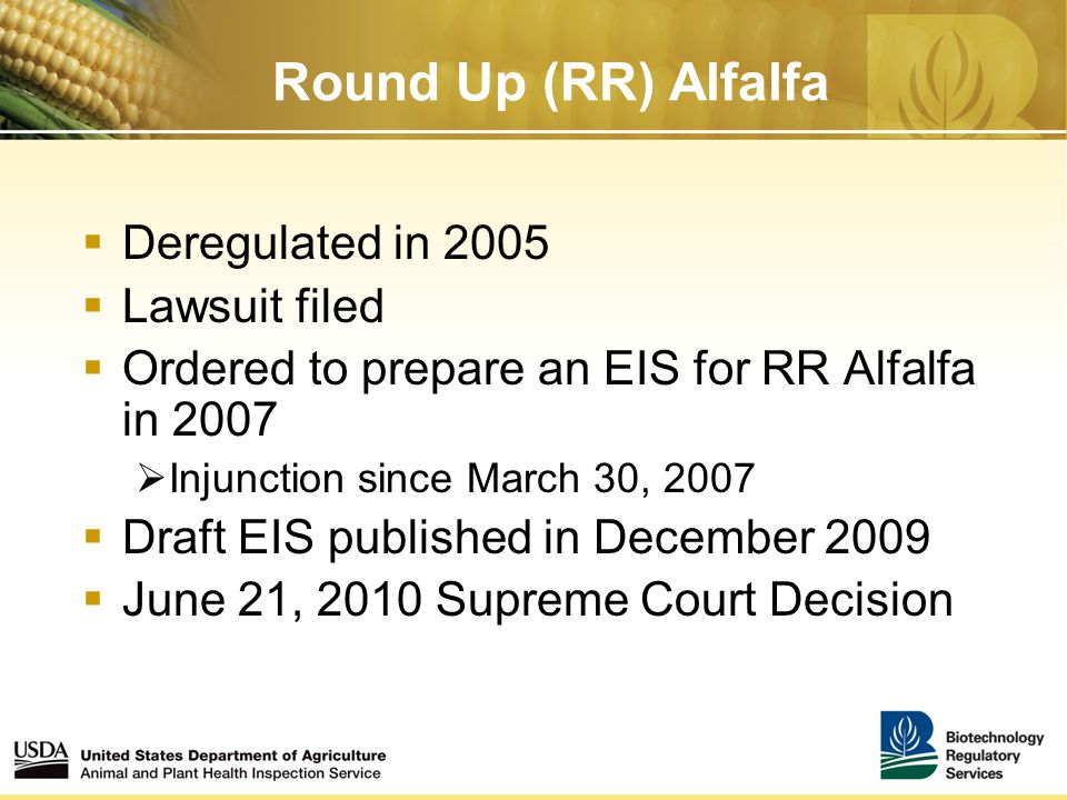 Round Up (RR) Alfalfa  Deregulated in 2005  Lawsuit filed  Ordered to prepare an EIS for RR Alfalfa in 2007  Injunction since March 30, 2007  Draft EIS published in December 2009  June 21, 2010 Supreme Court Decision