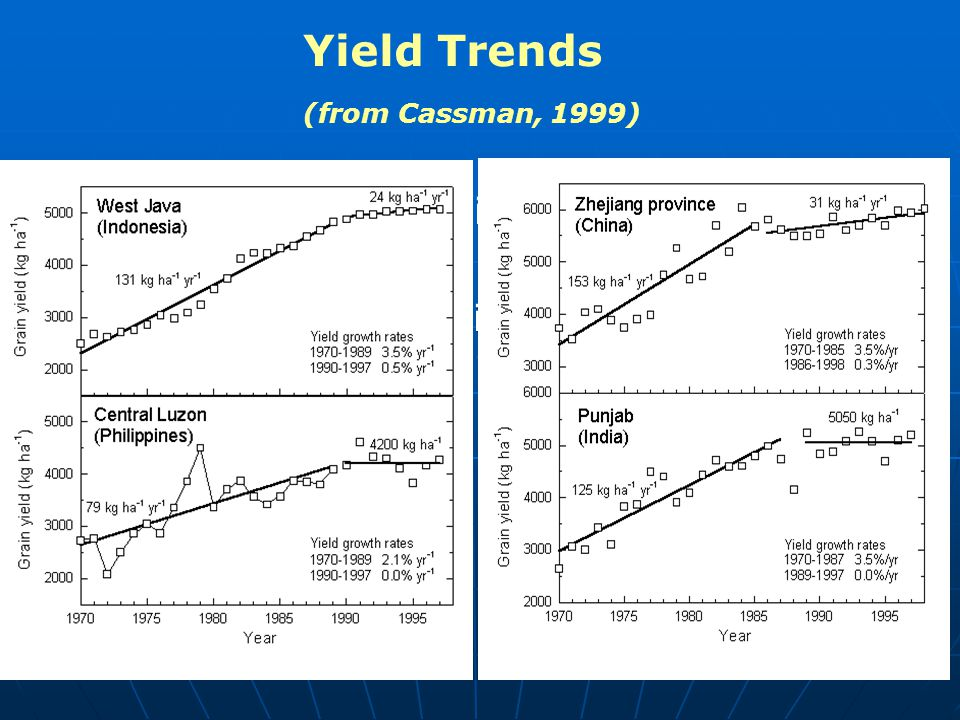 Yield Trends (from Cassman, 1999) Current Global GDP is US $33 trillion Global GDP in 2050 is estimated to increase by about a factor of 4 to about US $140 trillion