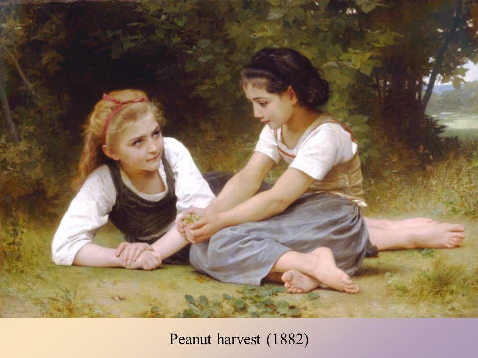 Peanut harvest (1882)