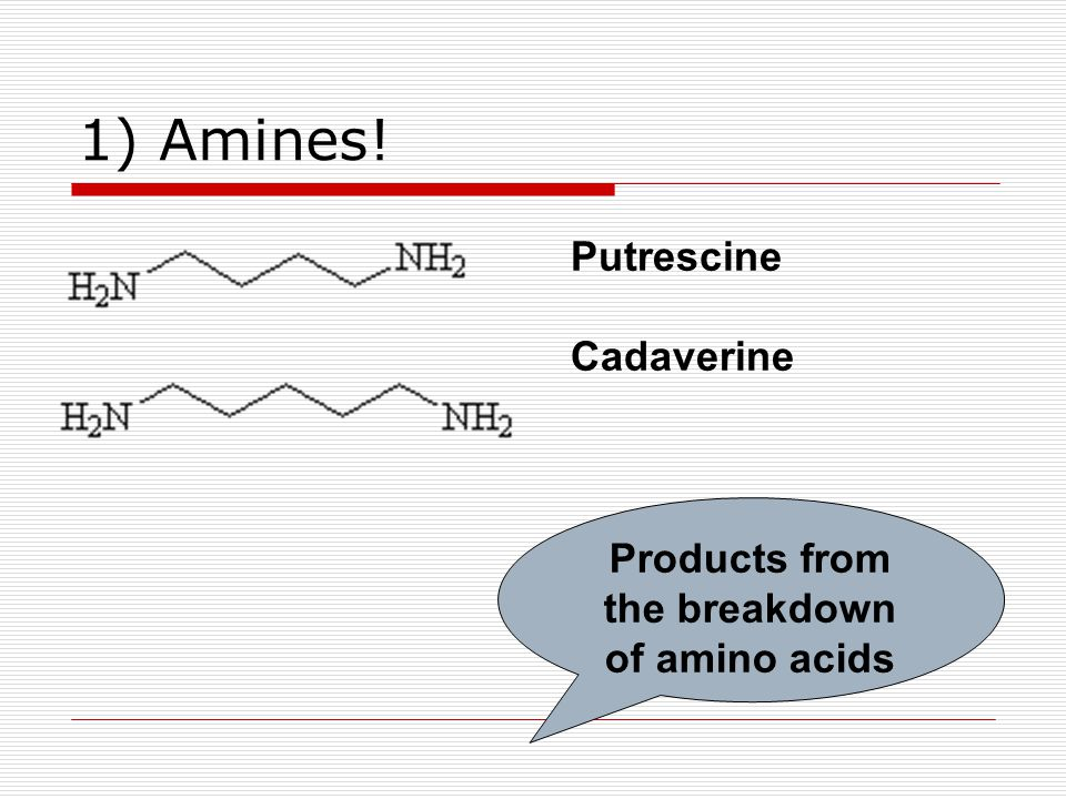 1) Amines! Putrescine Cadaverine Products from the breakdown of amino acids
