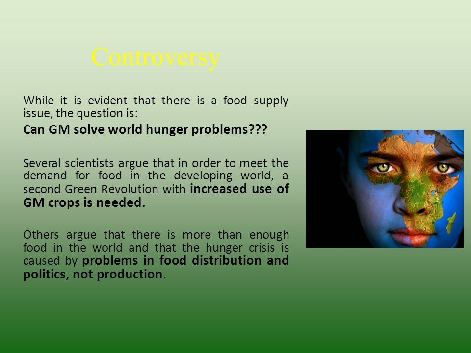 Controversy While it is evident that there is a food supply issue, the question is: Can GM solve world hunger problems??? Several scientists argue tha