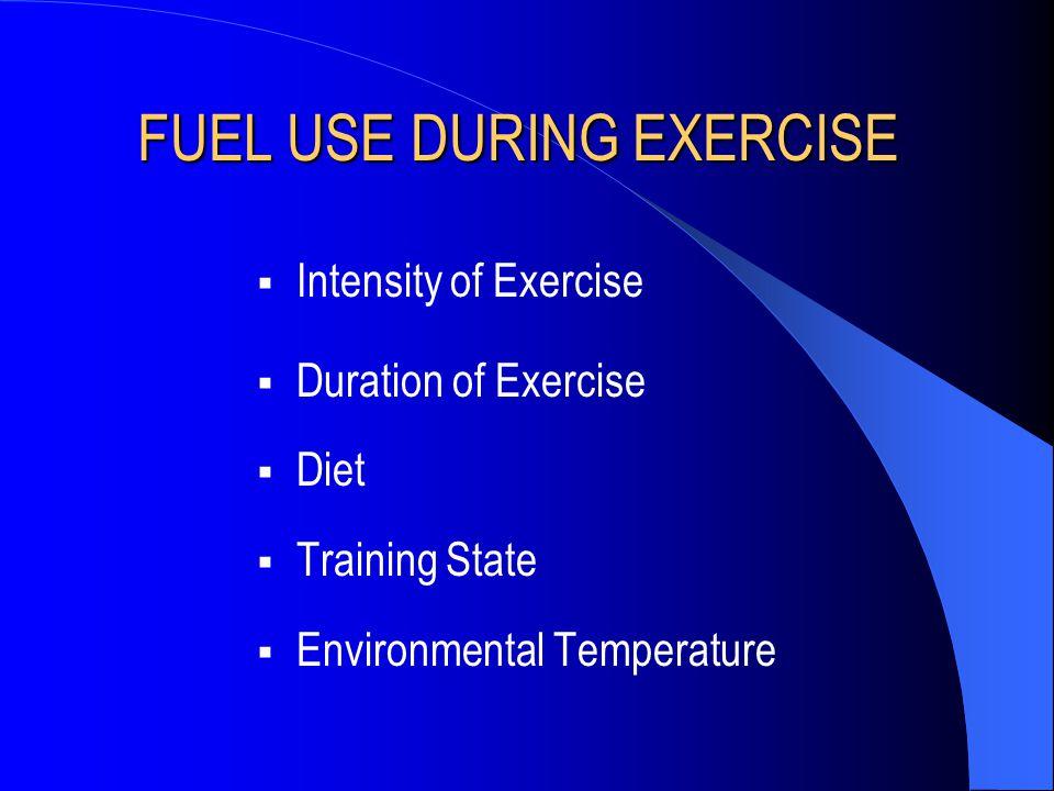 Effect of Diet on Muscle Glycogen