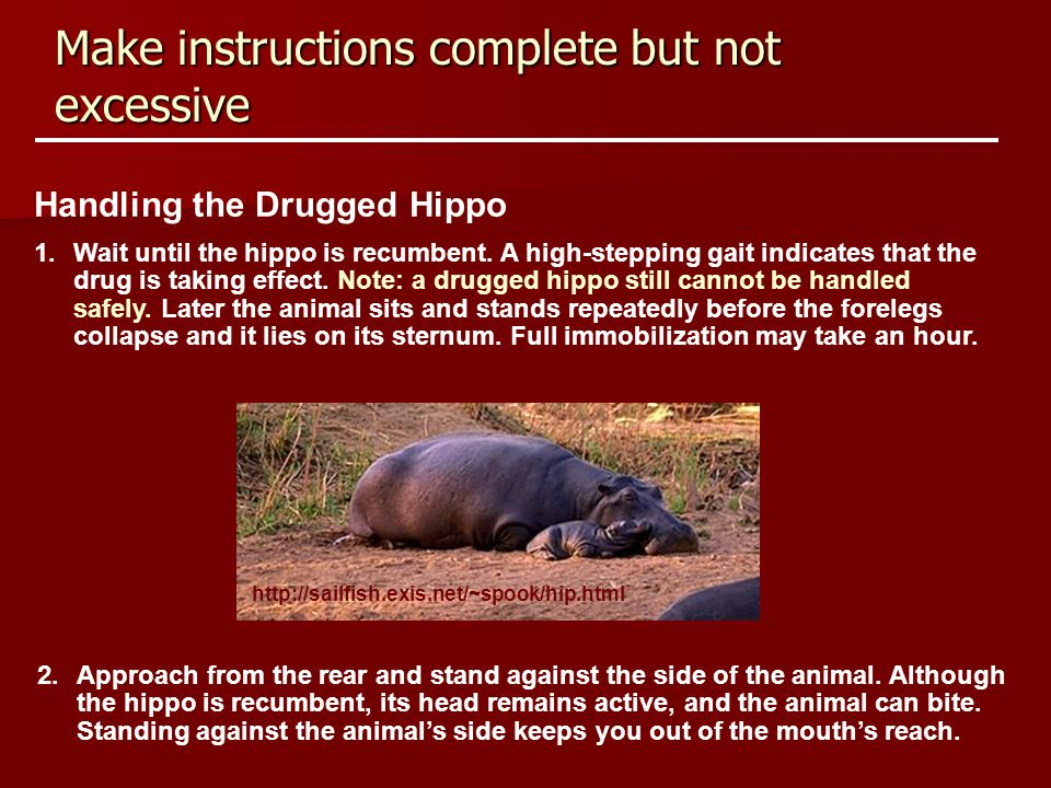 Make instructions complete but not excessive Handling the Drugged Hippo 1.Wait until the hippo is recumbent. A high-stepping gait indicates that the d