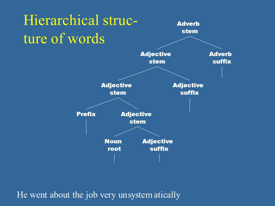 Hierarchical struc- ture of words He went about the job veryunsystematically Adjective stem Prefix Adjective stem Adjective suffix Noun root Adjective