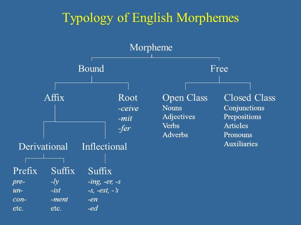 Typology of English Morphemes Morpheme AffixRoot -ceive -mit -fer BoundFree Prefix pre- un- con- etc. Suffix -ly -ist -ment etc. DerivationalInflectio