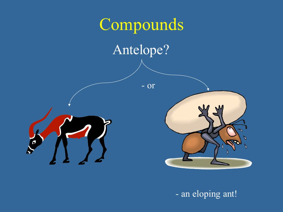 Compounds Antelope? - or - an eloping ant!