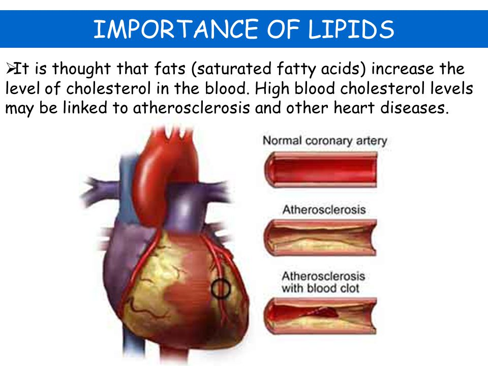  It is thought that fats (saturated fatty acids) increase the level of cholesterol in the blood. High blood cholesterol levels may be linked to ather