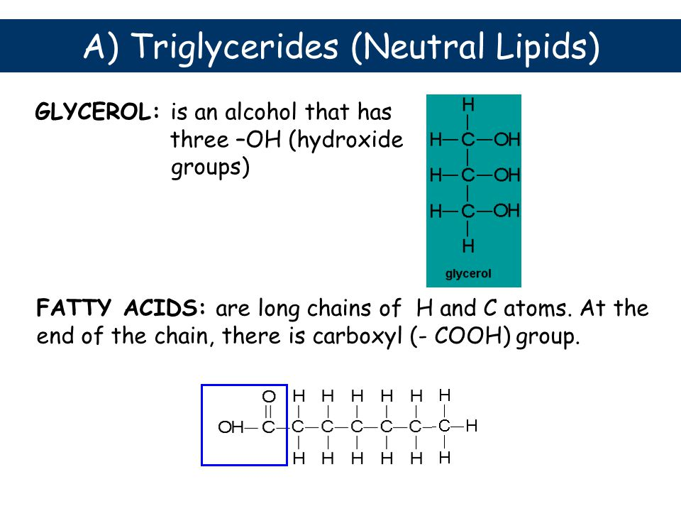 GLYCEROL: is an alcohol that has three –OH (hydroxide groups) FATTY ACIDS: are long chains of H and C atoms. At the end of the chain, there is carboxy