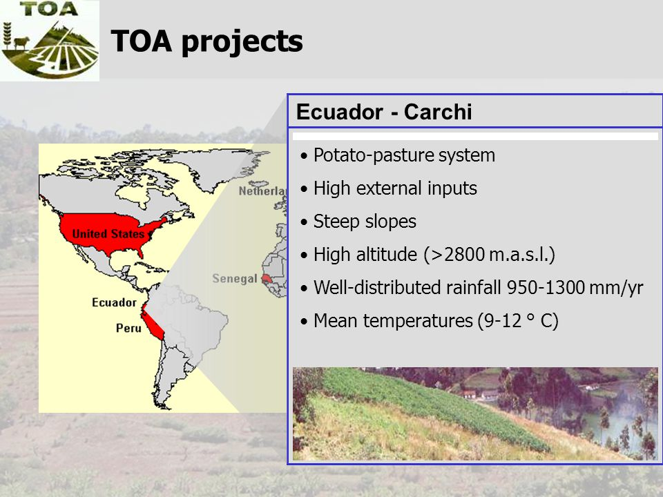 TOA projects Ecuador - Carchi Potato-pasture system High external inputs Steep slopes High altitude (>2800 m.a.s.l.) Well-distributed rainfall 950-130