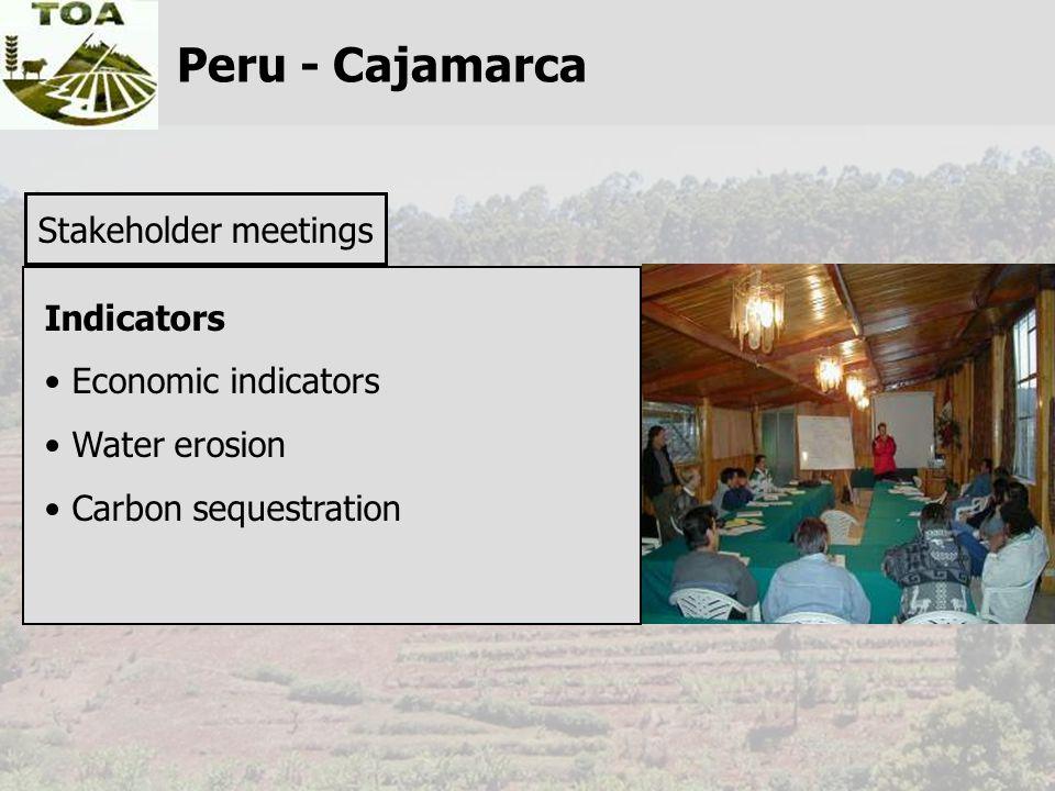 Peru - Cajamarca Stakeholder meetings Indicators Economic indicators Water erosion Carbon sequestration