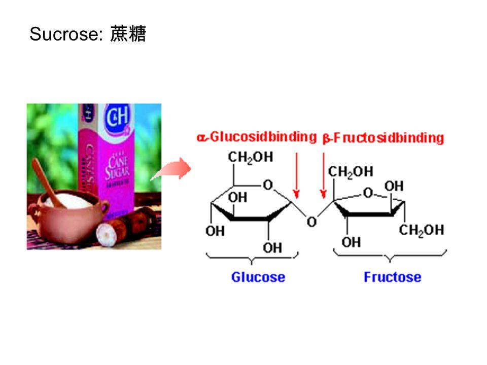 Sucrose: 蔗糖