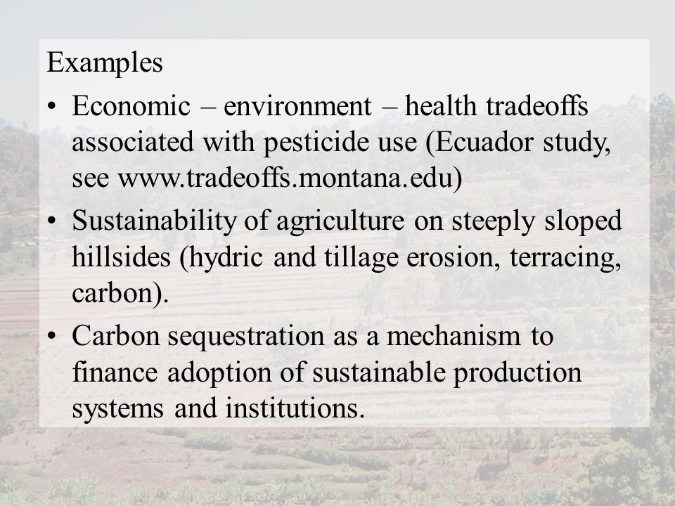 Examples Economic – environment – health tradeoffs associated with pesticide use (Ecuador study, see www.tradeoffs.montana.edu) Sustainability of agriculture on steeply sloped hillsides (hydric and tillage erosion, terracing, carbon).