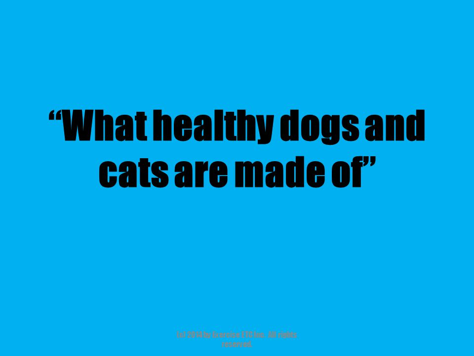 """""""What healthy dogs and cats are made of"""" (c) 2014 by Exercise ETC Inc. All rights reserved."""