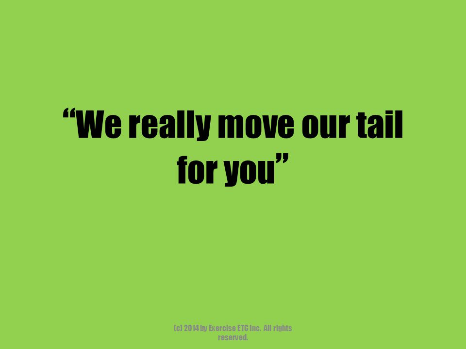 """"""" We really move our tail for you """" (c) 2014 by Exercise ETC Inc. All rights reserved."""