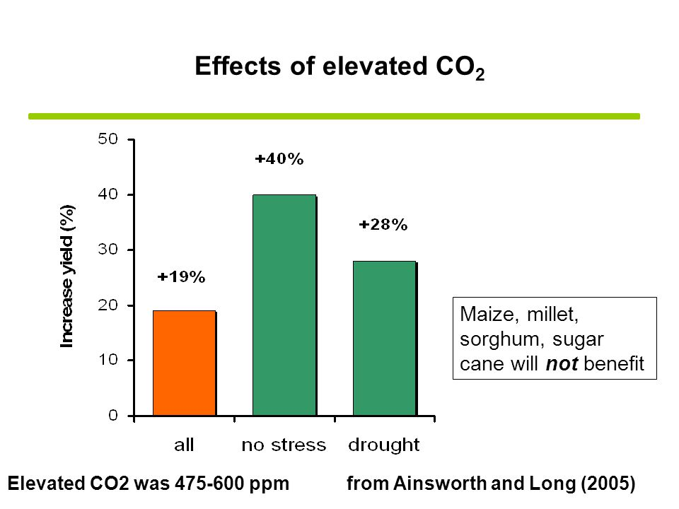 Effects of elevated CO 2 Elevated CO2 was 475-600 ppmfrom Ainsworth and Long (2005) Maize, millet, sorghum, sugar cane will not benefit