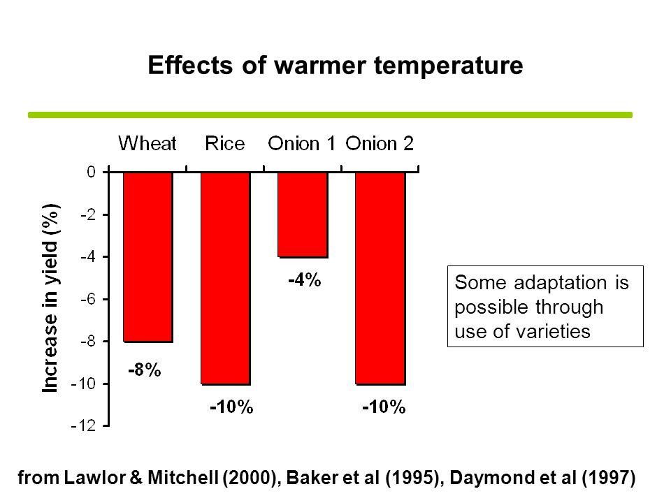 Effects of warmer temperature from Lawlor & Mitchell (2000), Baker et al (1995), Daymond et al (1997) Some adaptation is possible through use of varieties