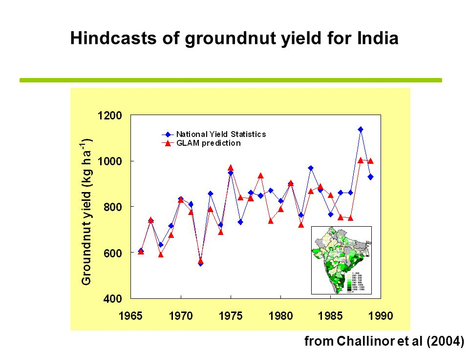 Hindcasts of groundnut yield for India from Challinor et al (2004)