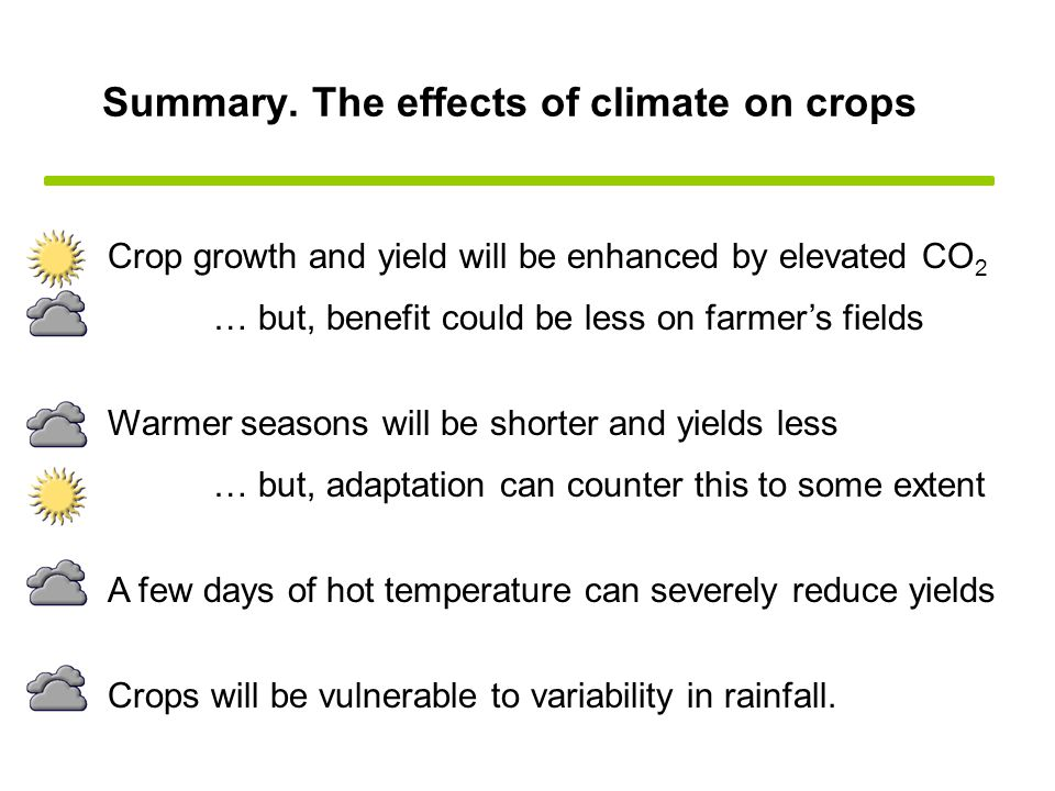 Summary. The effects of climate on crops Crop growth and yield will be enhanced by elevated CO 2 Warmer seasons will be shorter and yields less … but,
