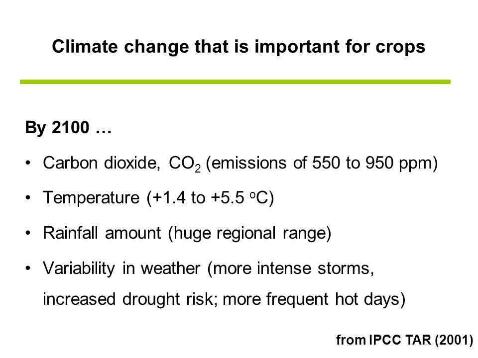 Climate change that is important for crops By 2100 … Carbon dioxide, CO 2 (emissions of 550 to 950 ppm) Temperature (+1.4 to +5.5 o C) Rainfall amount (huge regional range) Variability in weather (more intense storms, increased drought risk; more frequent hot days) from IPCC TAR (2001)