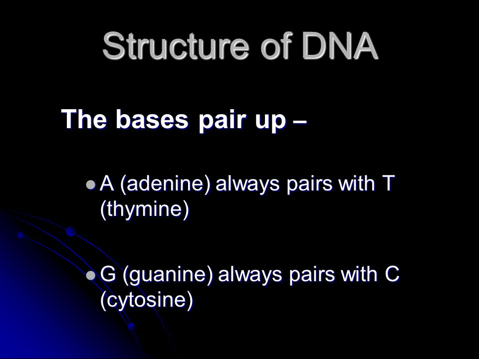 Structure of DNA The bases pair up – A (adenine) always pairs with T (thymine) A (adenine) always pairs with T (thymine) G (guanine) always pairs with C (cytosine) G (guanine) always pairs with C (cytosine)