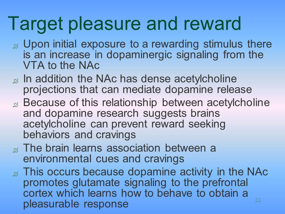 22 Target pleasure and reward Ò Upon initial exposure to a rewarding stimulus there is an increase in dopaminergic signaling from the VTA to the NAc Ò