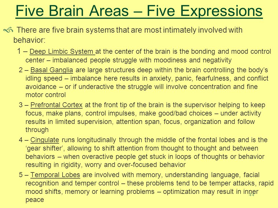44 Five Brain Areas – Five Expressions  There are five brain systems that are most intimately involved with behavior: 1 – Deep Limbic System at the c