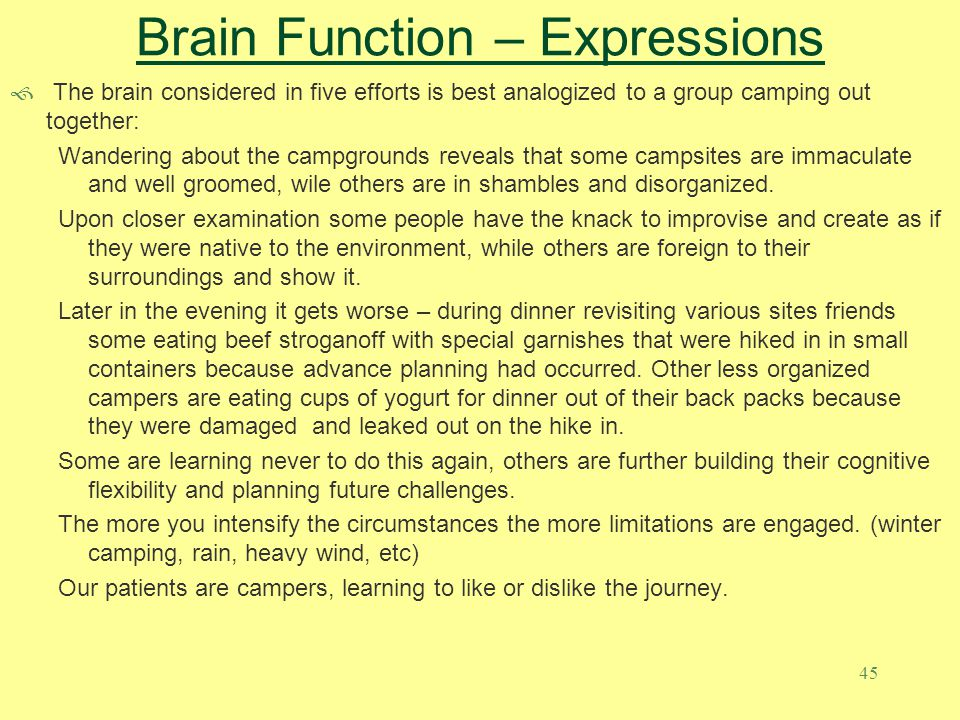 45 Brain Function – Expressions  The brain considered in five efforts is best analogized to a group camping out together: Wandering about the campgro