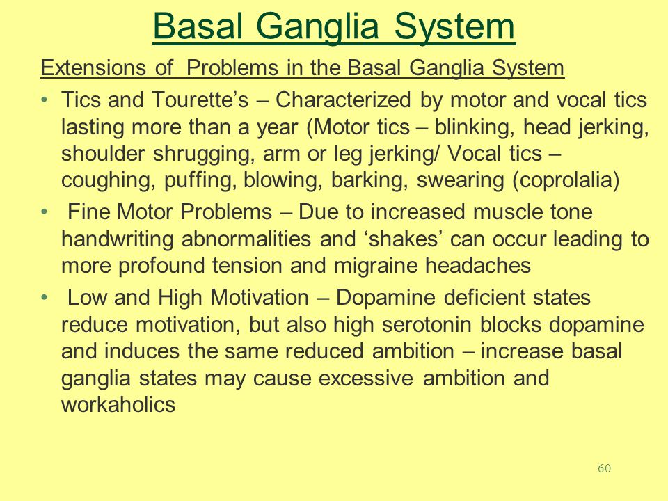 60 Basal Ganglia System Extensions of Problems in the Basal Ganglia System Tics and Tourette's – Characterized by motor and vocal tics lasting more th