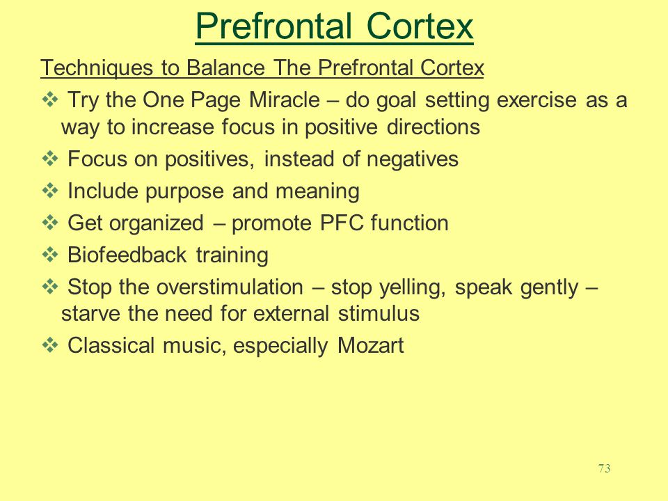 73 Prefrontal Cortex Techniques to Balance The Prefrontal Cortex  Try the One Page Miracle – do goal setting exercise as a way to increase focus in p