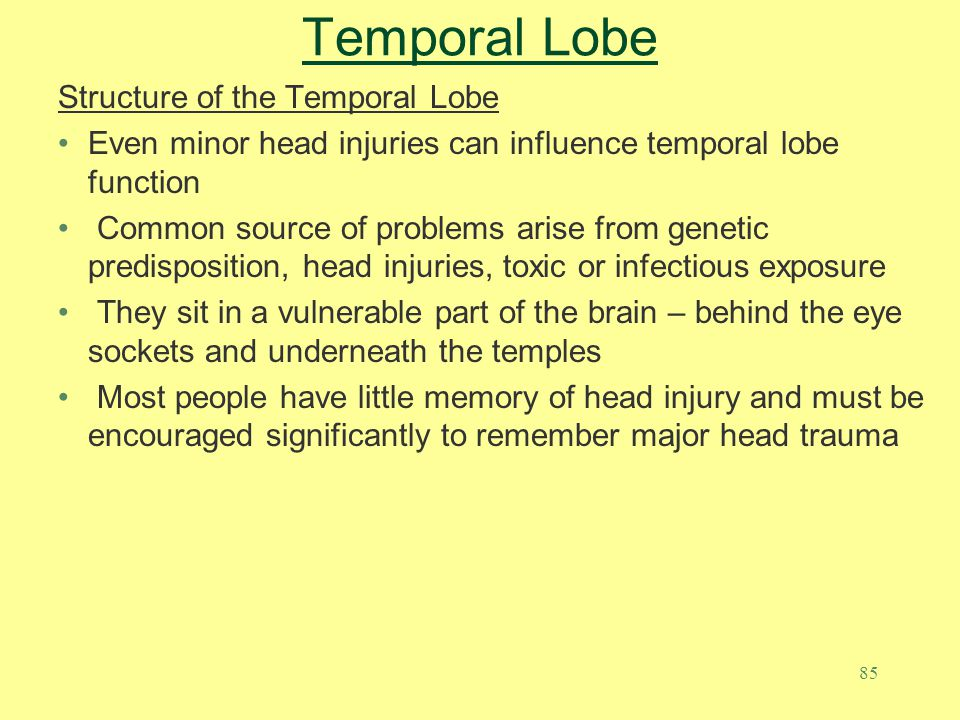 85 Temporal Lobe Structure of the Temporal Lobe Even minor head injuries can influence temporal lobe function Common source of problems arise from gen