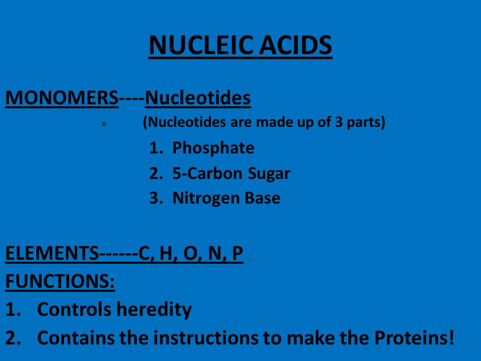 This is the End of your Protein notes!!!