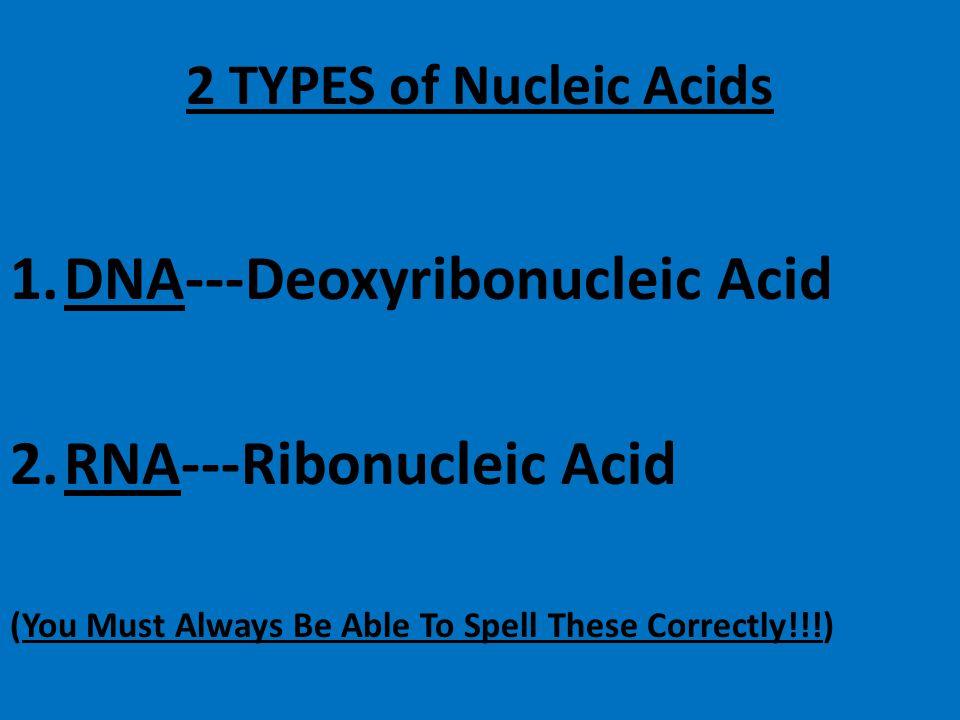 NUCLEIC ACIDS MONOMERS----Nucleotides » (Nucleotides are made up of 3 parts) 1. Phosphate 2. 5-Carbon Sugar 3. Nitrogen Base ELEMENTS------C, H, O, N,