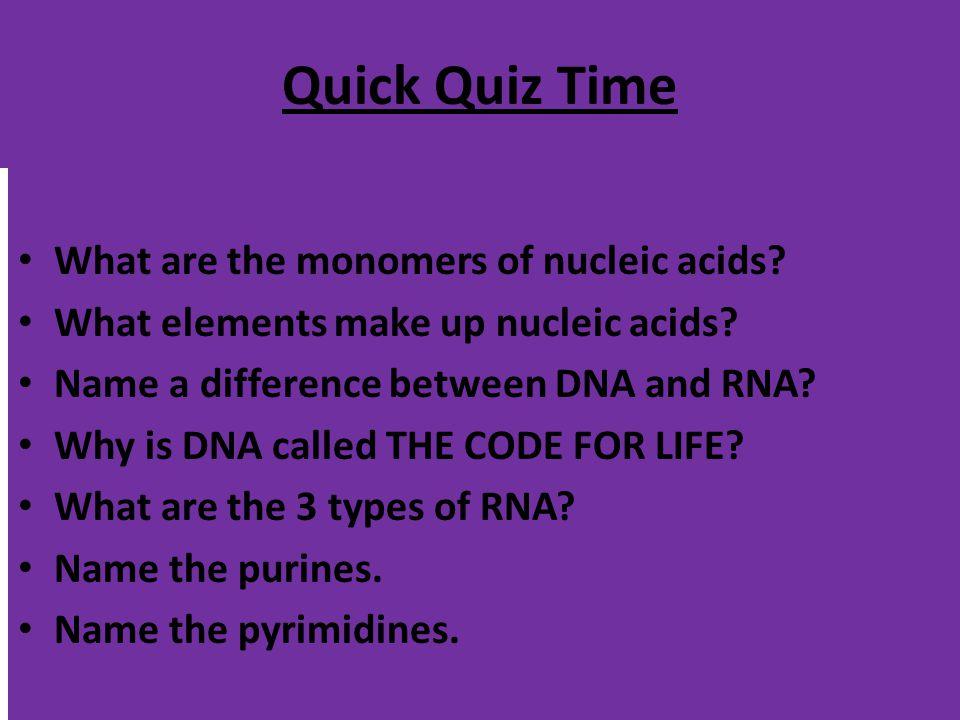 PURINES PYRIMIDINES Adenine & Guanine Double-ringed Bases Cytosine & Thymine Single-ringed Bases