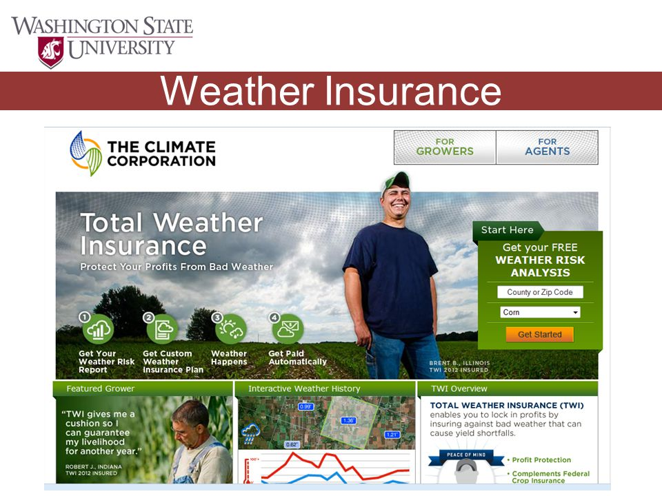 Winter Outlook Weather Insurance