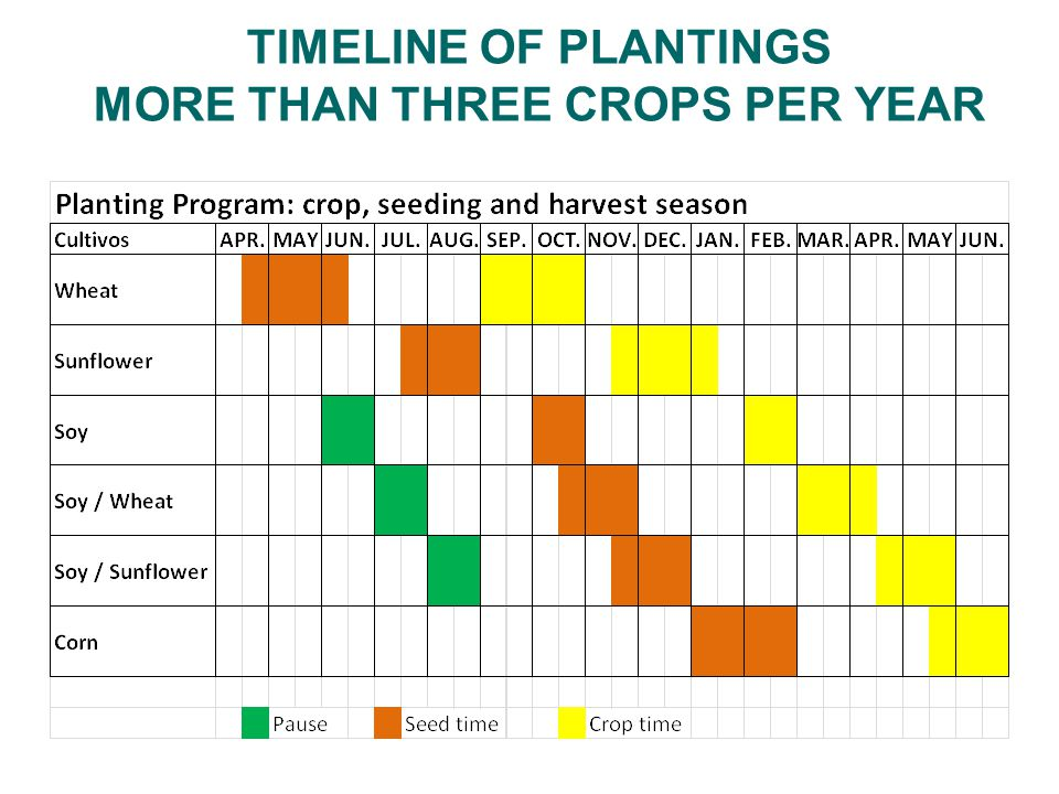 TIMELINE OF PLANTINGS MORE THAN THREE CROPS PER YEAR
