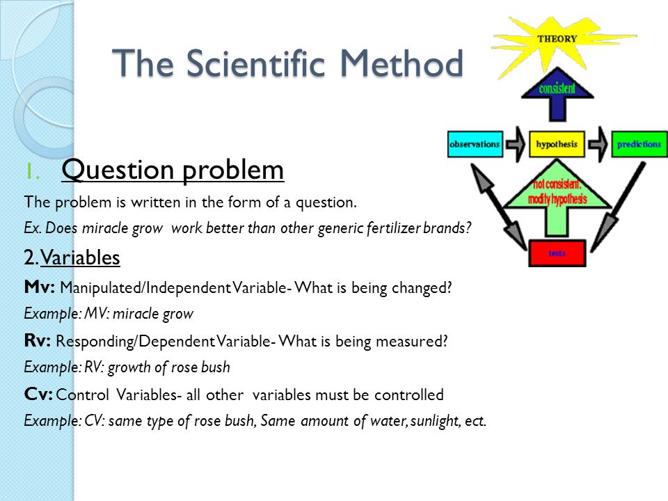 The Scientific Method 1. Question problem The problem is written in the form of a question. Ex. Does miracle grow work better than other generic ferti