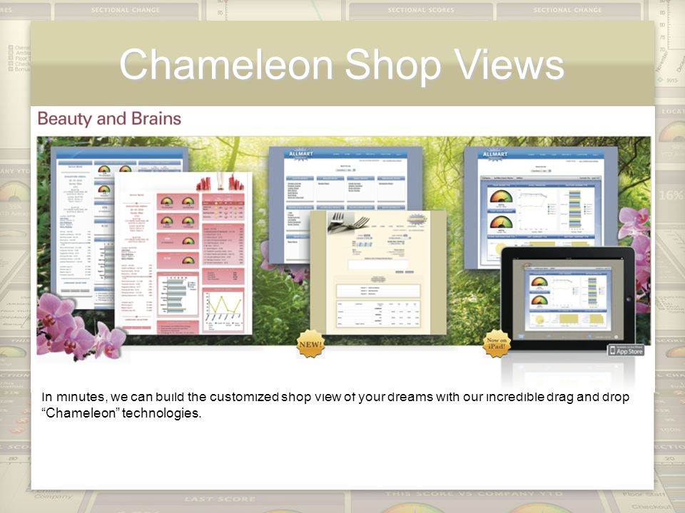 Chameleon Shop Views In minutes, we can build the customized shop view of your dreams with our incredible drag and drop Chameleon technologies.