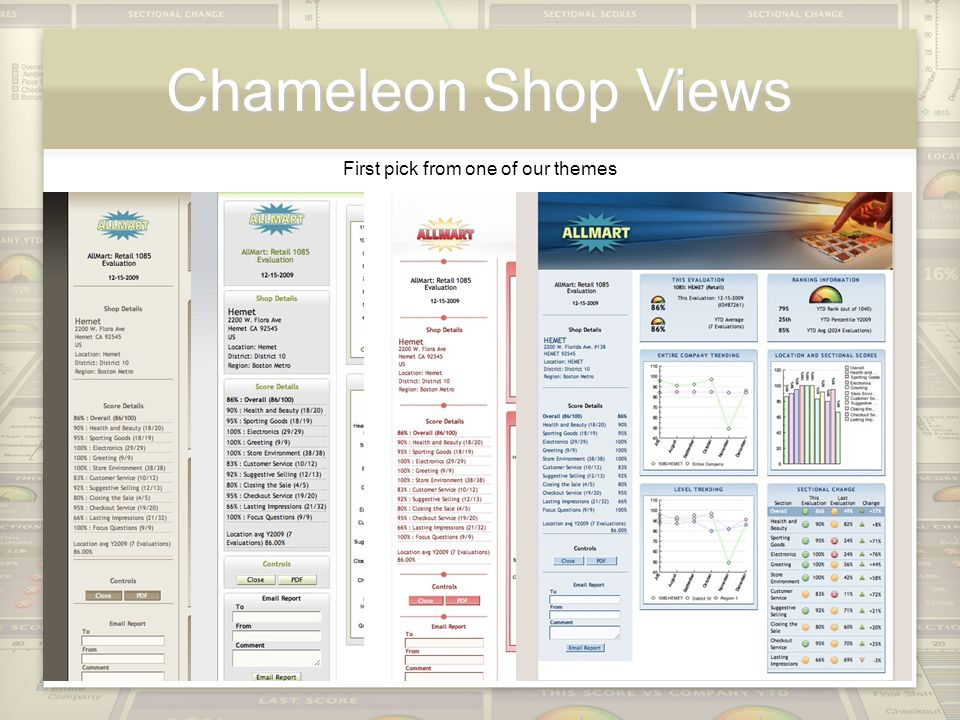 Chameleon Shop Views First pick from one of our themes
