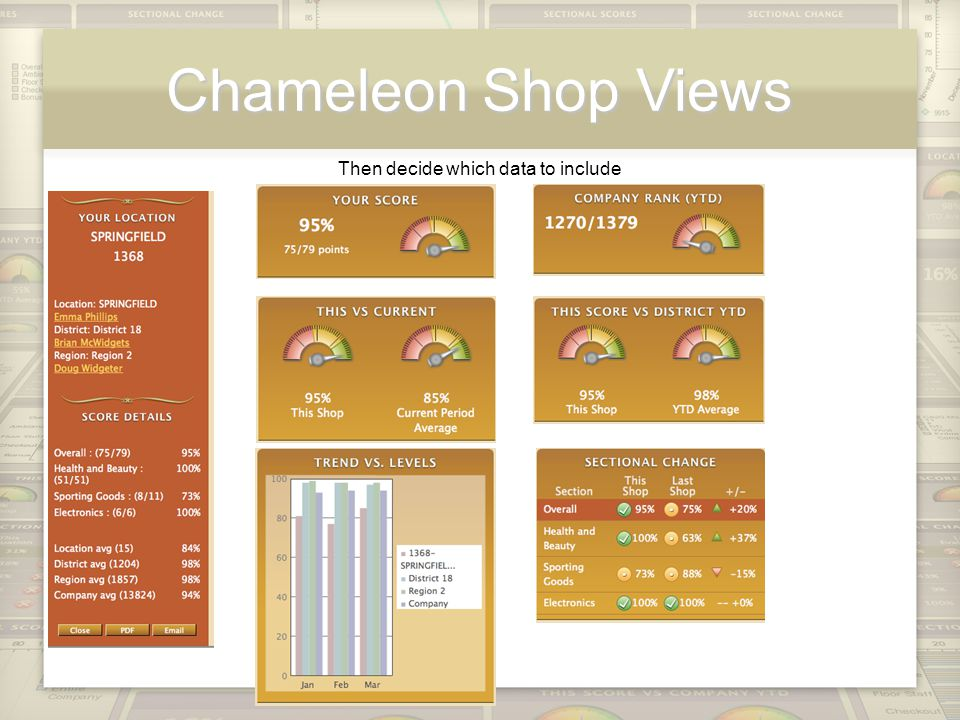 Chameleon Shop Views Then decide which data to include
