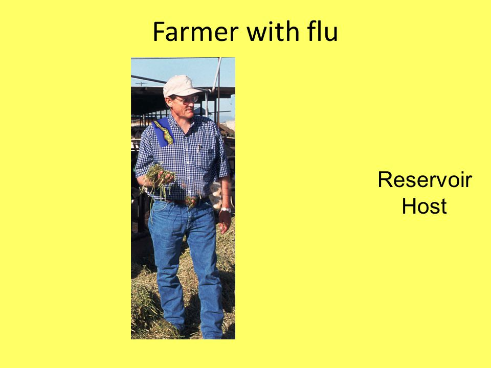 Farmer with flu Reservoir Host