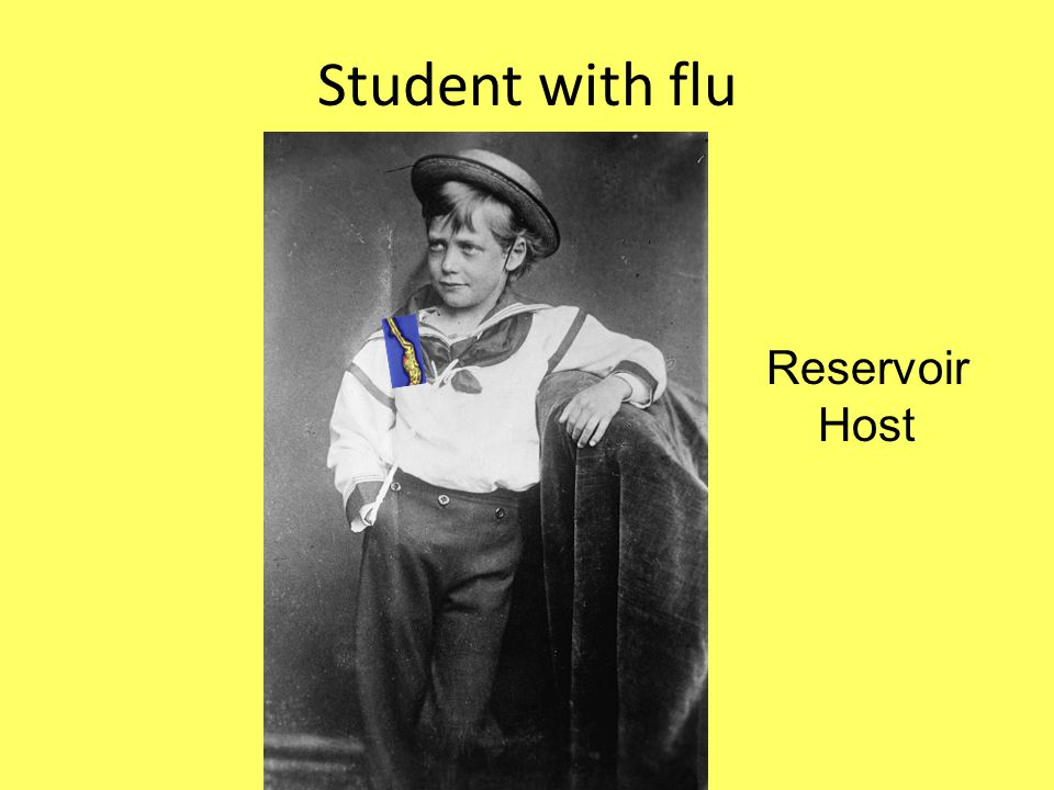 Student with flu Reservoir Host